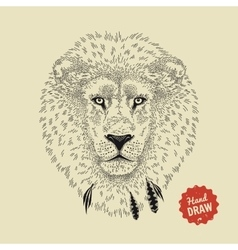 Sketch of a lion face lion head front vector