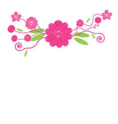 flowers on white background vector image vector image