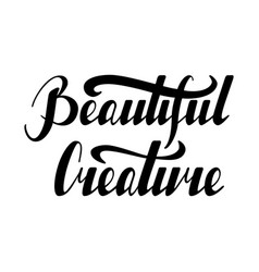 Lettering beautiful creature vector