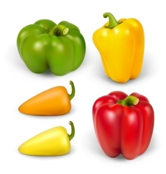 Set realistic peppers vector