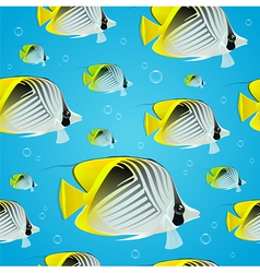 Seamless background - tropical butterflyfish vector image