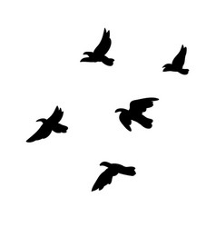 Black flying birds flock concept vector