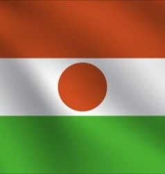 Niger flag vector