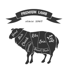 Lamb cuts for butcher shop poster vector