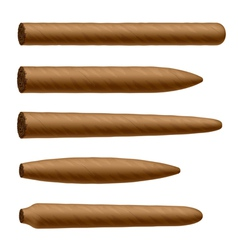 Cigar shapes vector image vector image