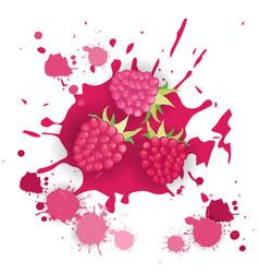 raspberry fruit logo watercolor splash design vector image