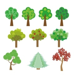 trees set in a flat design style to the streets or vector image vector image