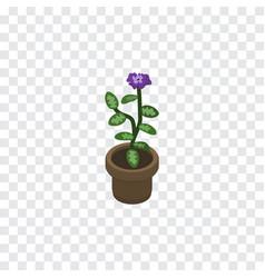 Isolated flowerpot isometric flower vector