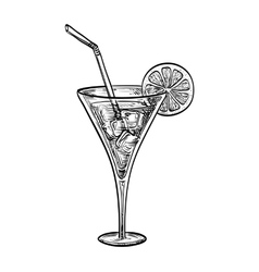 beverage vector image
