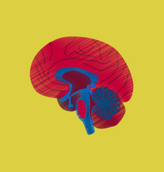 Flat shading style icon brain vector