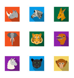 a set of icons of wild animals predatory and vector image