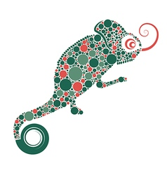 Chameleon preview vector