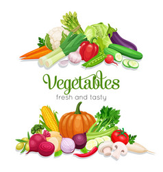 banner with vegetables vector image