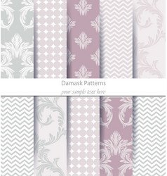 Classic ornament patterns set abstract vector