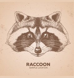 Hipster animal raccoon hand drawing muzzle of vector
