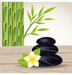 spa stones bamboo 02 vector image