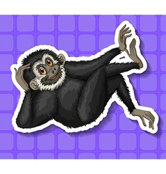 Black gibbon scratching his head vector
