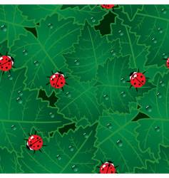 bugs background vector image vector image