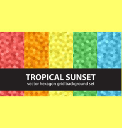 hexagon pattern set tropical sunset seamless vector image vector image