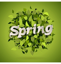 spring bomb vector image
