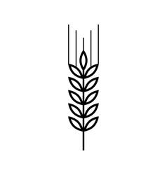 Wheat line icon vector
