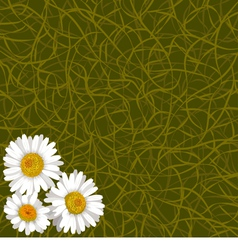 Background from grass and flowers of camomile vector
