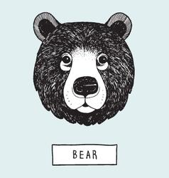 Drawing bear head vector