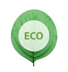 leaf with eco frame green eco friendly sign vector image vector image