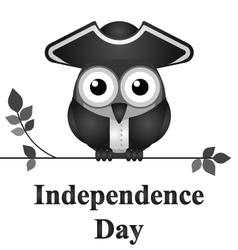 Independence Day vector image