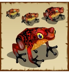 Red spotted toad with big eyes vector