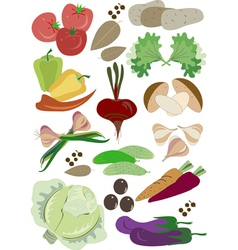 Colorful fresh group of vegetables vector