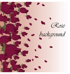 Pink roses petals background vector