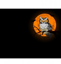 owl night background vector image