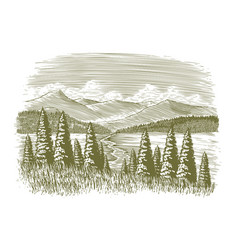 woodcut vintage wilderness vector image