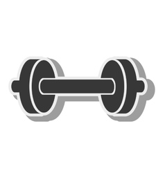 Dumbbells weights equipment vector