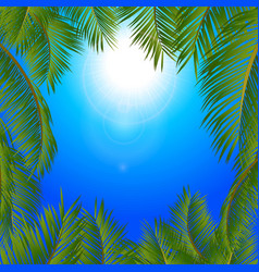 Tropical palm trees frame over blue sunny sky vector