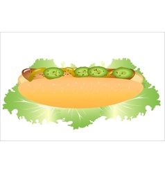 Hot dog with lettuce vector