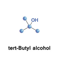 tert butyl alcohol vector image vector image