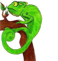 Chameleon cartoon vector image vector image