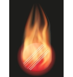 Cricket ball with flame vector image