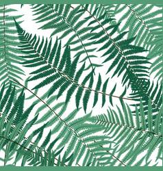 Fern leaf fern leaf seamless pattern vector