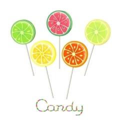 Fruit lollipops on stick vector image