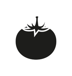 Tomato fruit vector