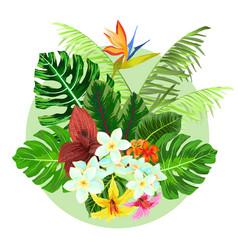 colorful tropical plants design vector image