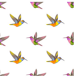 hummingbird embroidery seamless pattern vector image