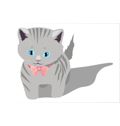 Little kitten on white background vector image vector image