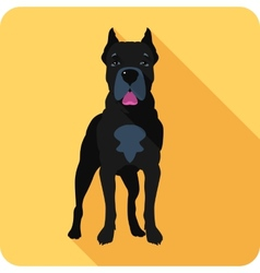 Dog cane corso icon flat design vector