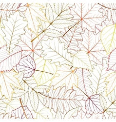 seamless with autumn leaves vector image