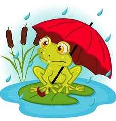 frog under umbrella vector image