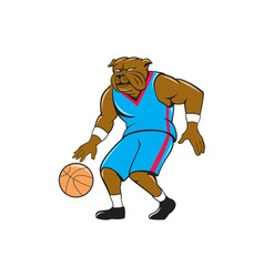 Bulldog Basketball Player Dribble Cartoon vector image